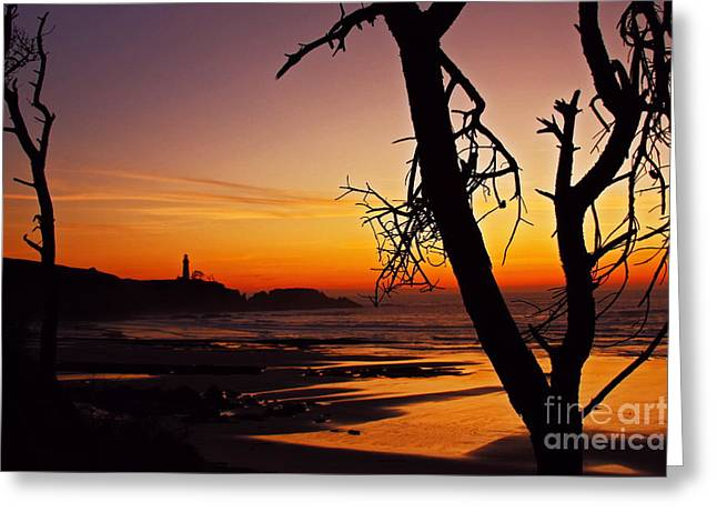 Crimson Dusk At Yaquina Head Sixty Five Greeting Card