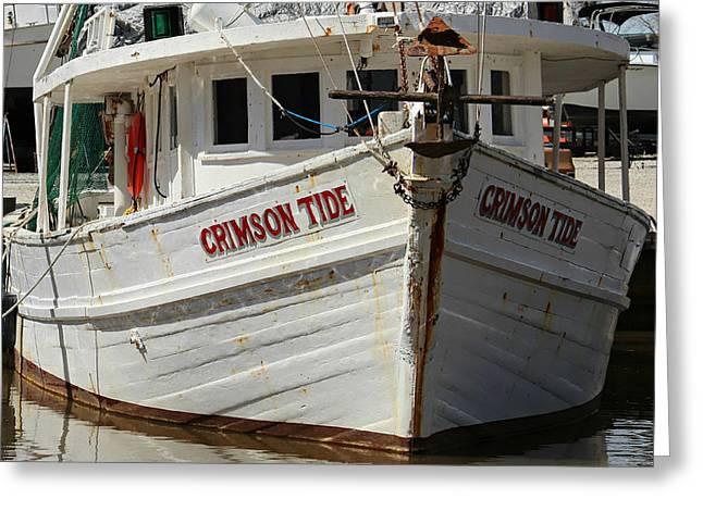 Crimson Tide At Fly Creek Marina Greeting Card by Lynn Jordan