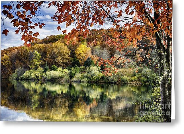 Crisp Autumn Day In New Jersey Greeting Card by George Oze