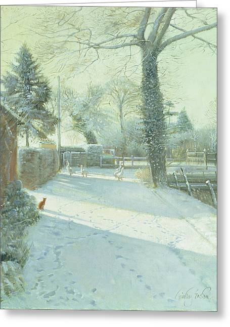 Criss-cross Oil On Canvas Greeting Card by Timothy Easton