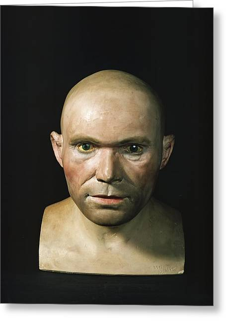 Cro-magnon Man Reconstructed Head Greeting Card by Science Photo Library