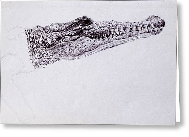 Croc Sketch Greeting Card