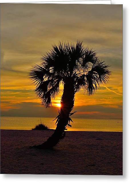 Greeting Card featuring the photograph Crooked Palm Sunset by Richard Zentner