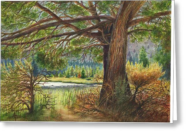 Crooked River Shade Greeting Card by Arthur Fix