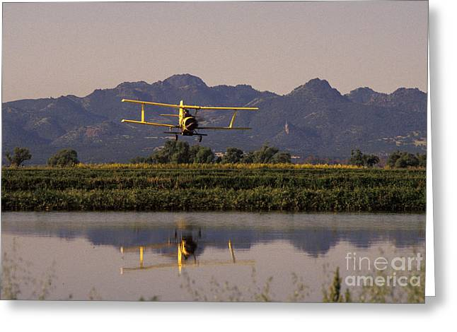 Crop Duster Applying Seed To Rice Field Greeting Card by Ron Sanford