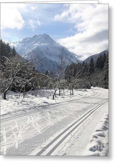 Cross Country Ski Track - Austria Greeting Card
