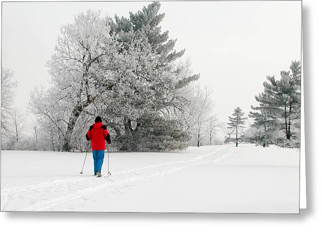 Greeting Card featuring the photograph Cross Country Skiing by Rob Huntley