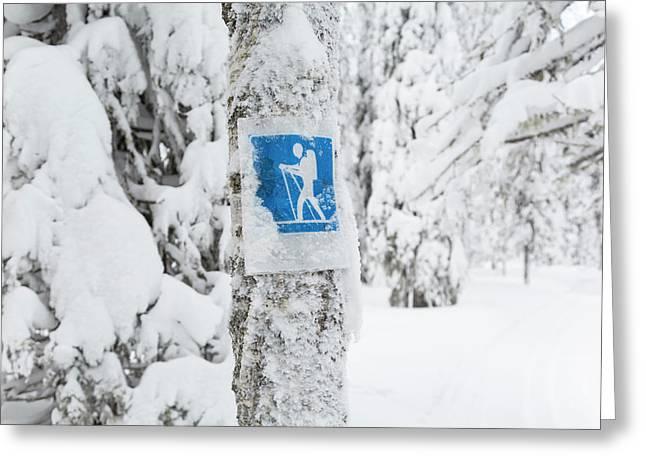 Cross Country Skiing Sign, Riisitunturi Greeting Card