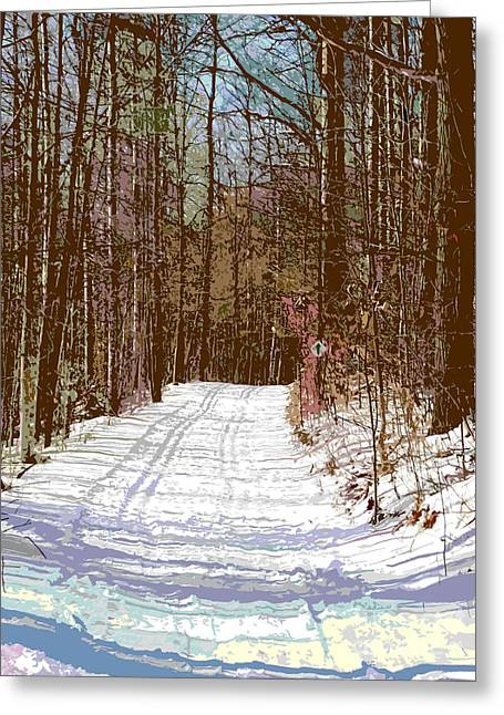 Greeting Card featuring the photograph Cross Country Trail by Nina Silver