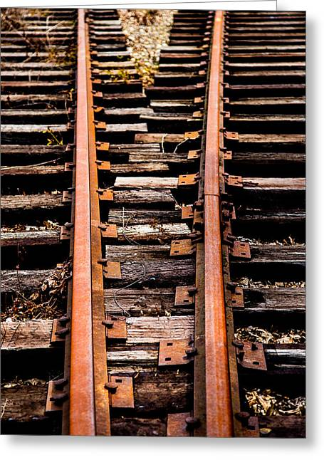 Crossing Tracks Greeting Card by Karol Livote