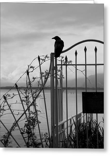 Crow On Gothic Gate Greeting Card
