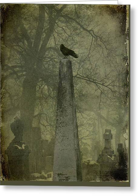 Crow On Spire Greeting Card by Gothicrow Images