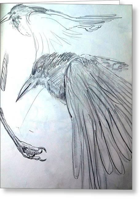 Crow Pencil Study Greeting Card by Trudi Doyle