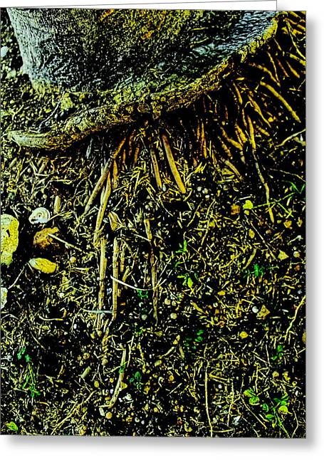Crowned Roots With A Perspective Greeting Card by Sandra Pena de Ortiz