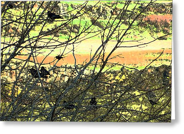 Crows And Two Blackbirds Greeting Card
