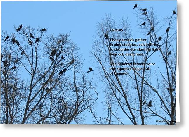 Crows Greeting Card by Catherine Favole-Gruber