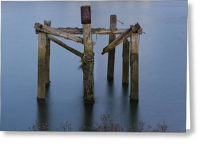 Crucifixion Of Wood And Water 2 Greeting Card by Fernando Alvarez