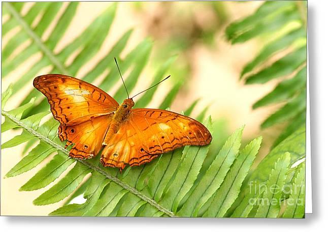 Cruiser In Orange Greeting Card