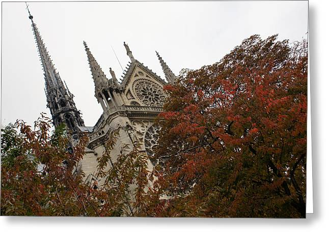 Cruising Down The Seine River And Catching A Glimpse Of Notre-dame De Paris Greeting Card