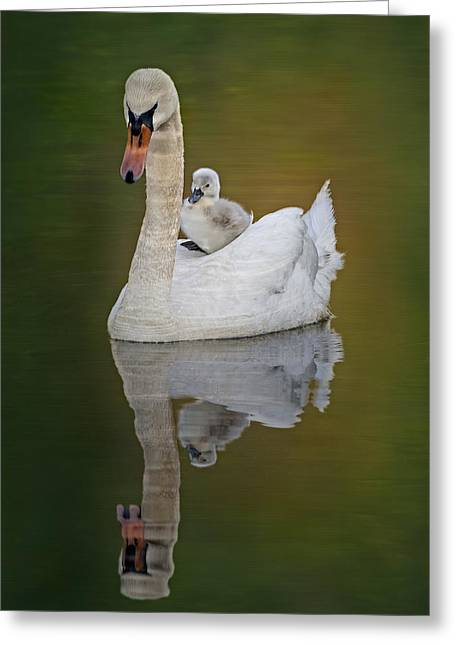 Cruising With Mom Greeting Card