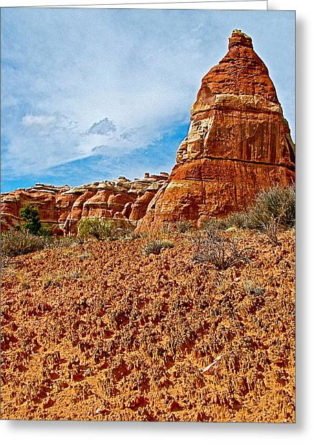 Cryptobiotic Or Living Soil In Chesler Park In Needles District Of Canyonlands National Park-utah Greeting Card