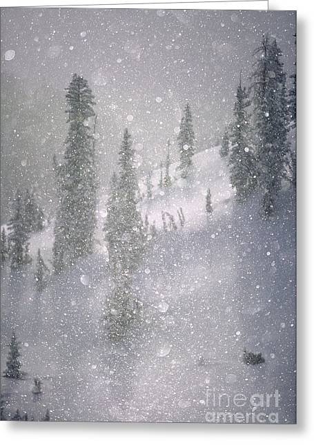 Crystalized Snowflakes Falling While Being Backlit By The Sun Greeting Card