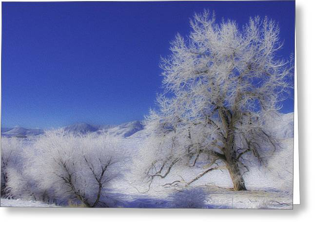 Crystalized Valley Greeting Card