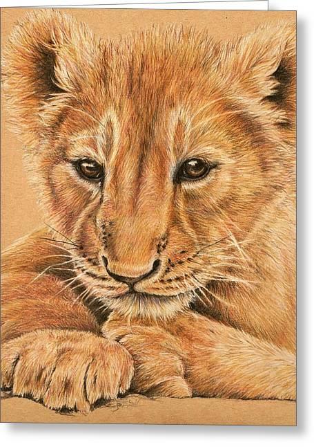 Greeting Card featuring the drawing cub by Heidi Kriel