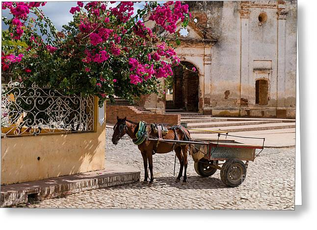 Greeting Card featuring the photograph Cuba Impression by Juergen Klust