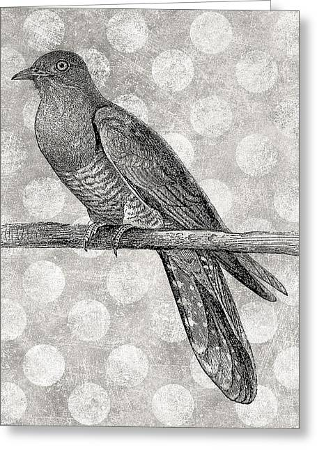 Gray Bird Greeting Card by Flo Karp