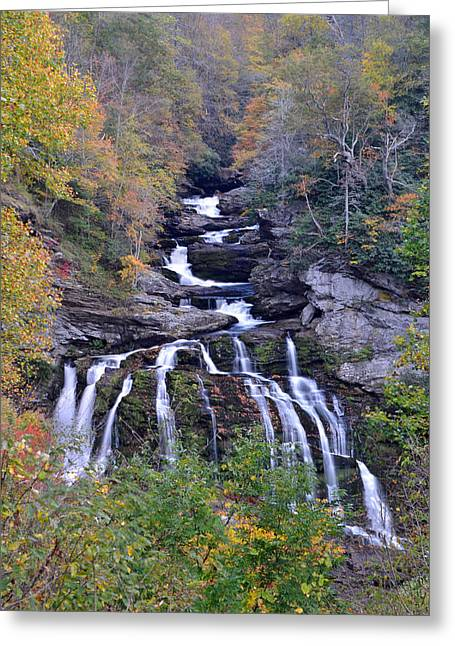 Cullasaja Falls Greeting Card by Mary Anne Baker