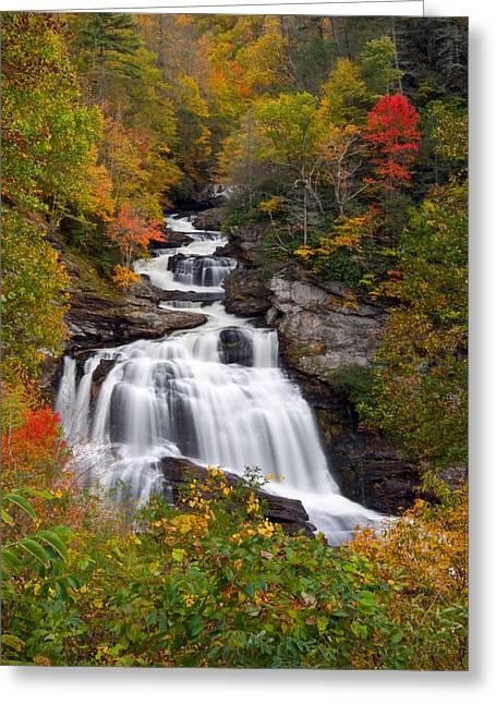 Cullasaja Falls - Wnc Waterfall In Autumn Greeting Card