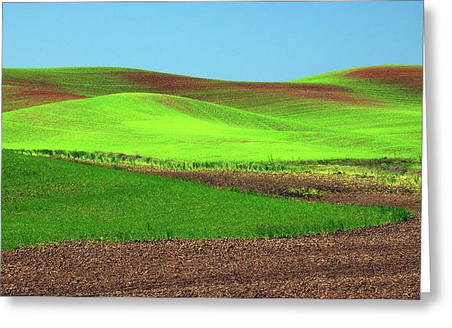 Cultivation Patterns, Palouse, Whitman Greeting Card