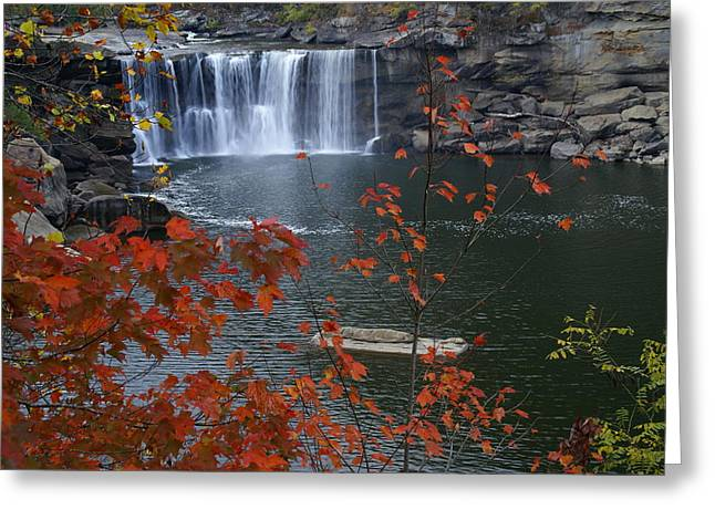 Cumberland Falls Greeting Card by Bj Hodges