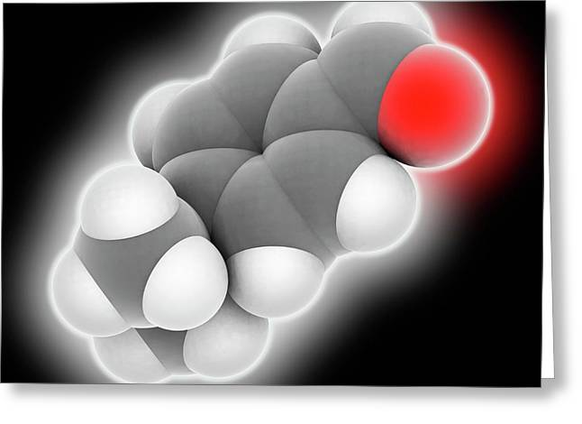 Cuminaldehyde Molecule Greeting Card by Laguna Design