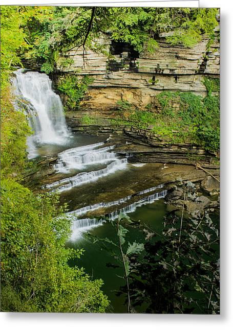 Cummins State Park Falls Vista Greeting Card by Douglas Barnett