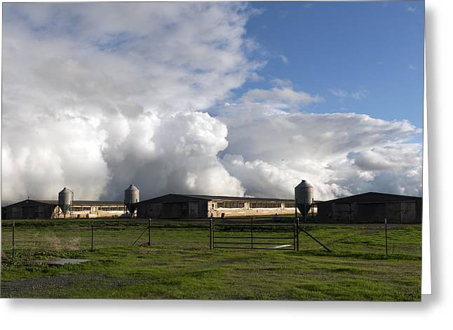 Cumulas Clouds Form Over Chicken Coops In Stockton Greeting Card