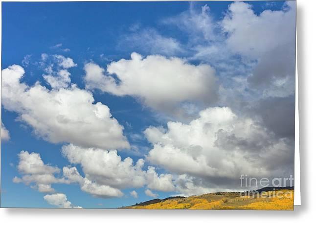 Cumulus Clouds And Aspens Greeting Card by Yva Momatiuk John Eastcott