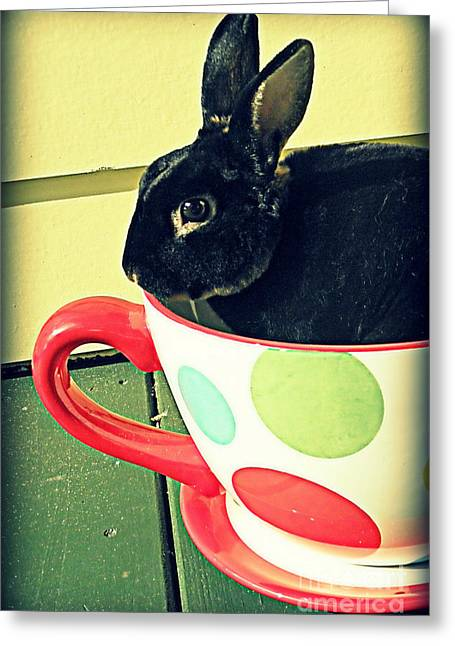 Cup O' Rabbit Greeting Card
