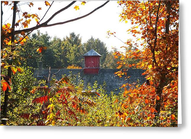 Cupola Greeting Card by Linda Marcille