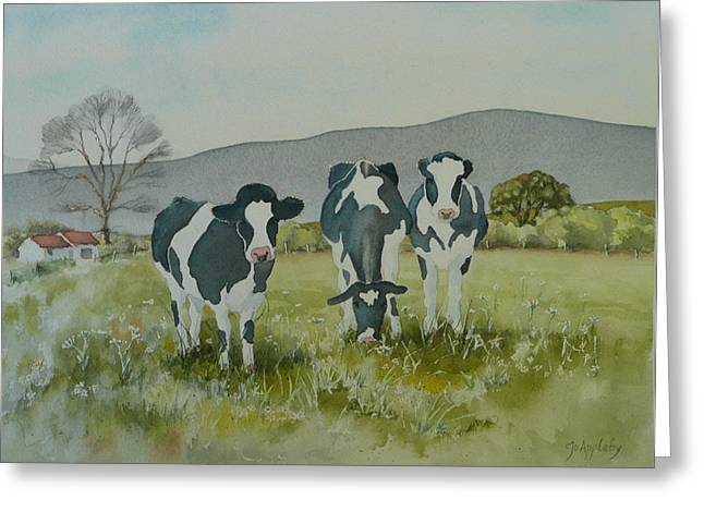 Curious Cows Greeting Card by Jo Appleby