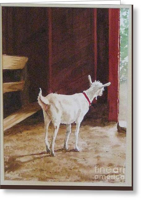 Curious Kid Greeting Card by Carla Dabney
