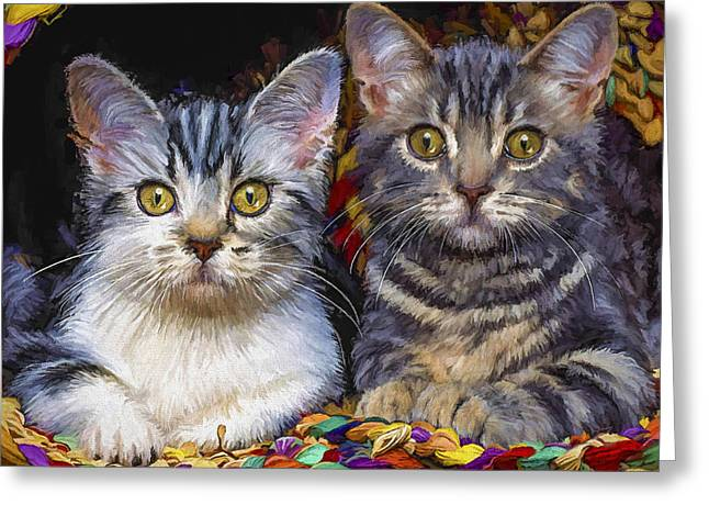 Curious Kitties Greeting Card
