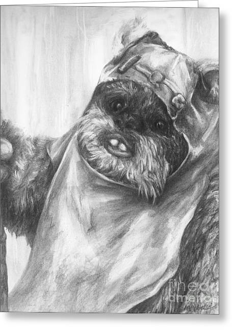 Curious Wicket Greeting Card by Meagan  Visser