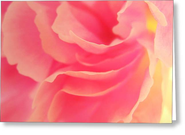 Curling Blossom Greeting Card