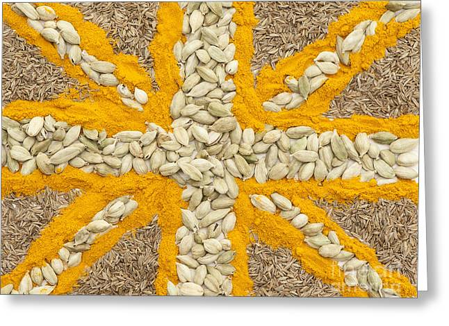 Curried Flag Greeting Card by Anne Gilbert