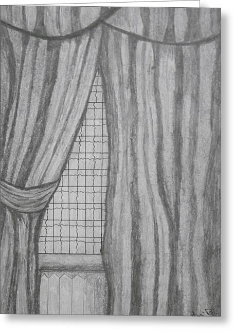 Greeting Card featuring the drawing Curtains In A5 by Martin Blakeley