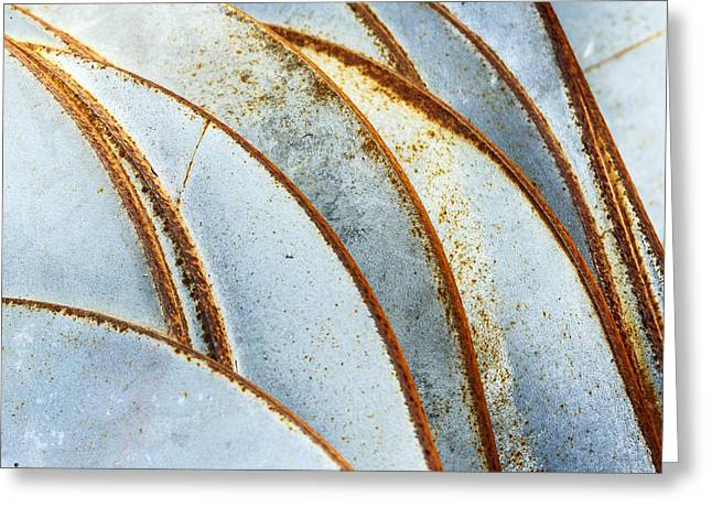 Curved Rust Greeting Card