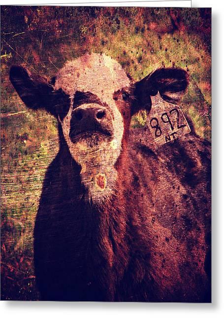 Cute Calf Grunge Greeting Card by Cassie Peters