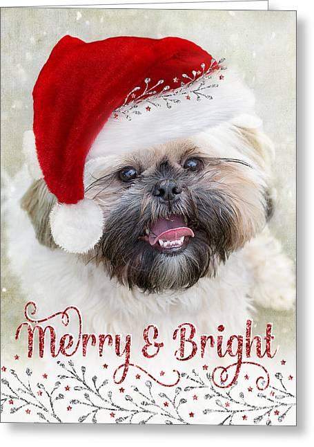 Cute Christmas Card - Shih Tzu In Santa Hat Greeting Card